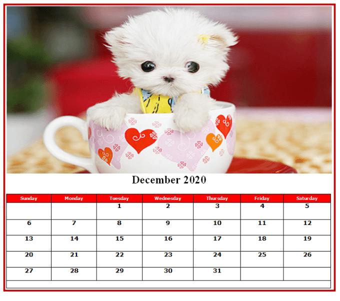 Cute December Calendar 2020