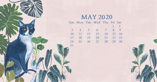 May 2020 Desktop Calendar Wallpaper