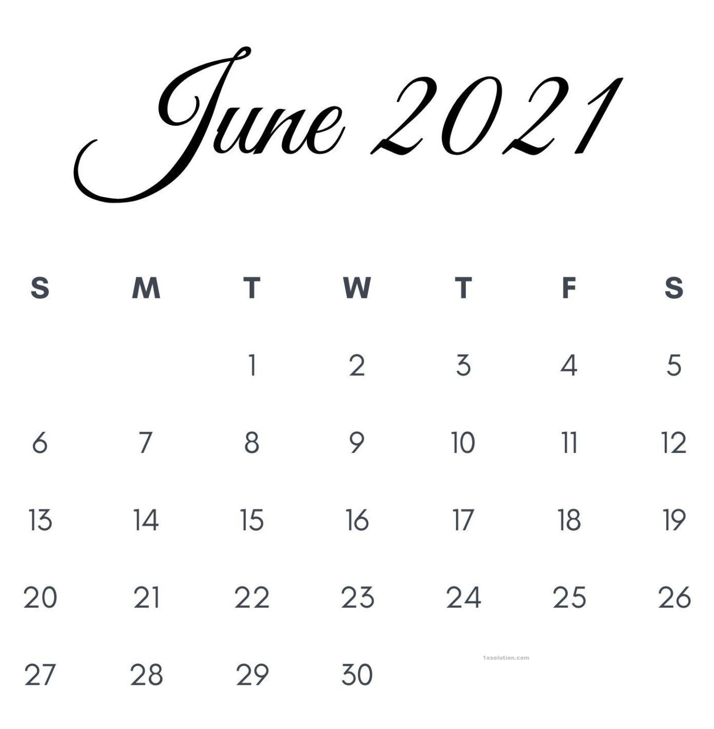 June 2021 Calendar Planner For work and Meeting